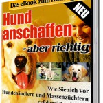 baninana_cover_hund