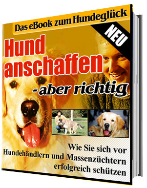 Produkttest eBook-Shop, eBook-Ratgeber
